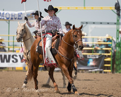 Strathmore Stampede 2018 (tallhuskymike) Tags: strathmorestampede event strathmore stampede outdoors cowgirl rodeo 2018 horse horses alberta western prorodeo