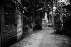 Untitled (richardhwc) Tags: asahi pentax spotmatic blackandwhite fomapan200 guangzhou china smc takumar 35mmf35 m42 film