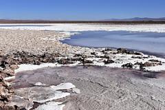 Lagunas Escondidas de Baltinache 2 (RobertLx) Tags: chile atacama desert arid salt saltflats america latinamerica lake water nature landscape barren baltinache lagunasescondidas altiplano
