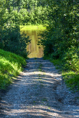 Wabasca River Road (Bracus Triticum) Tags: wabasca river road アルバータ州 alberta canada カナダ 8月 八月 葉月 hachigatsu hazuki leafmonth 2019 reiwa summer august