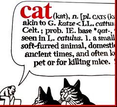 MM 12 July 2019: B. Kliban's Cat (jefalump) Tags: macromondays printedword macro cat kliban book cover art