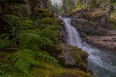 Silver Falls (John Behrends) Tags: