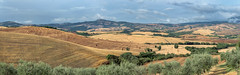 Beautiful Tuscany (Pieter ( PPoot )) Tags: panorama landscape tuscany agriturismo summer
