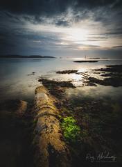 Revealed (RTA Photography) Tags: paignton coast lowtide light sea water torbay devon southdevon seaweed seascape nikon d750 rtaphotography kasefilters kase ndfilter sky nature outdoors nikkor 1835