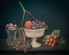 Summer Berry Still Life 6715 A (jim.choate59) Tags: jchoate on1pics stilllife berries summer fruit painting painterly strawberry blueberry elderberry slidersunday hss d610