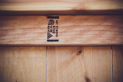 new fence [Day 3875]