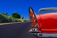 Wing It (oybay©) Tags: dodgeroyale chrysler chryslercorporation heavymetal large orange white twotone 1959 dodge custom royale v8 coupe tutone grill bumper mopar car shows jeep ram usa antique cars automobiles auto automobile transportation
