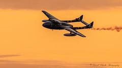 de Havilland DH-115 Vampire (david g schultz) Tags: 08092019 abbotsfordinternationalairshow airplane d850 aircraft outdoor vehicle dehavillanddh115vampire nikon nikonsigma sigma jet davidschultzphotography