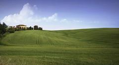 Tuscan wheat field (jrunions1) Tags: italy tuscany wheat field scenery sangimignano