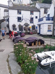 The Blue Peter Inn Polperro Cornwall UK (davidseall) Tags: the blue peter inn pub pubs tavern bar public house houses polperro cornwall cornish uk gb british english village gbg gbg2016