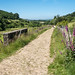The lane from Old Glossop