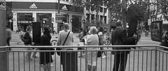 Members of a Cult (Altgott) Tags: film nikon f3 street blackandwhite analog angle wide streetphotography hc110 wideangle ilfordhp5 hp5 analogue 24mm ilford nikonf3 filmisnotdead