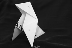 playing with printed word (Franck.Robinet) Tags: pandora casadepapel printedword monochrome bnw bw origami macromondays artistic handmade