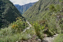 Steep was the climb (Chemose) Tags: sony ilce7m2 alpha7ii mai may pérou peru inca rio rivière river urumba incatrail chemindelinca caminoinca paysage vallée valley landscape montagne mountain andes sentier path