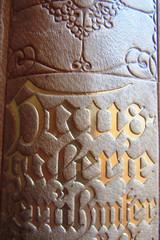 Hausgalerie (hussi48) Tags: printedwords macromondays nahaufnahme leder buch buchstaben