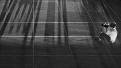 light & shadow (heinzkren) Tags: schwarzweis blackandwhite bw sw biancoetnero noiretblanc monochrome panasonic lumix woman candid gitter grid street streetphotography shadows photographer steeelgrating trittgitter structures