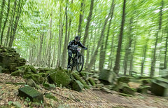 2019 223-365 Enduro Racing (kayakingjanet) Tags: 78 action pippingfordpark southernenduro stagetwo techniques 2019365 infinitepossibilities