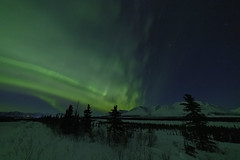 Cantwell Eruption! (dickpicnic) Tags: northernlights alaska aurora