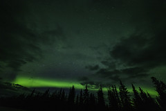 Arctic Nightrider (dickpicnic) Tags: aurora northernlights alaska