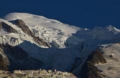 Sommet du Mont Blanc - Summit (CHAM BT) Tags: montblanc crevasse bloc serac neige lumiere arete bosse glacier hautemontagne alpes ombre soleil snow ridge light shadow sun ice steep chaos