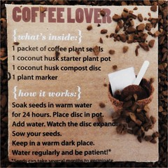 Wake Up And Smell The Coffee HMM (cheltenhamgirl (Yvonne)) Tags: box growyourowncoffee printedword macromonday