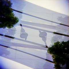 [La Mia Città] Politecnico con piccione (Urca) Tags: holgalomo1201908100037 milano italia 2019 holga lomo doppiaesposizione doubleexposure analog analogico 120 6x6 square medium multi film filmisnotdead toycamera