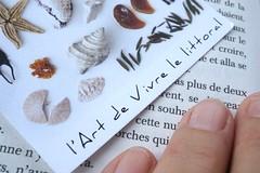 L'Art de Vivre le littoral (M. Carpentier) Tags: macromondays printedword imprimerie mot word doight fingers lecture reading blanc artdevivre littoral