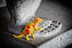 Dinosaur in hiding (Camera Freak) Tags: 190812ryogokud810tokyoryogoku2019augustnikond810 dinosaur foot sumo stone plastic yellow toes japan tokyo nikon d810 ryogoku august 2019