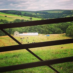 Shutted Gate (vapour trail) Tags: yorkshire england dales countryside gate field farm metal