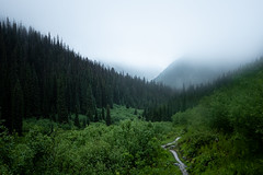 Unclear (Aymeric Gouin) Tags: canada britishcolumbia glacier bc parks parcs nature landscape paysage paisaje landschaft mood fog brume ambiance mist woods forest fujifilm xt2 aymgo aymericgouin