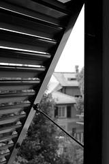 To the right. (l'obiettivo) Tags: foto fotografia fotoinbiancoenero fotografiainbiancoenero monocromo finestra genova liguria italia photo photography blackandwhitephoto blackandwhitephotography bnwphoto bnwphotography monochrome window italy canon canon1300d