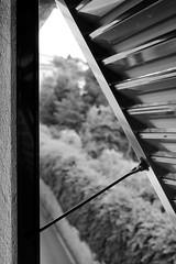 To the left. (l'obiettivo) Tags: foto fotografia fotoinbiancoenero fotografiainbiancoenero monocromo finestra genova liguria italia photo photography blackandwhitephoto blackandwhitephotography bnwphoto bnwphotography monochrome window italy canon canon1300d