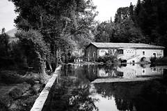 GFX1649 - Water mill (Diego Rosato) Tags: water mill mulino acqua natura nature posta fibreno albero tree bianconero blackwhite fuji gfx50r fujinon gf63mm rawtherapee