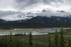 Canadian Rockies, Banff National Park (benereshefsky) Tags: canada alberta mountains snow canadianrockies banffnationalpark