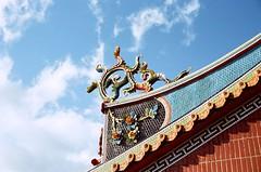 Ready to fly. (蒼白的路易斯) Tags: taipei taiwan 台灣 film 九份 kodakvision350d yashicaelectro35gsn 底片攝影 底片