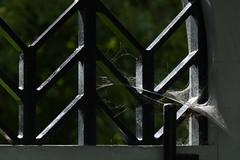 Locked door (KsCattails) Tags: bars door locked spiderweb pyramid kansascity missouri kauffmanmemorialgarden kathrynkennedy kscattails flickrfriday gravesite