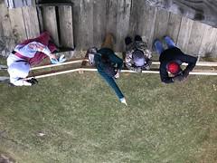 IMG_9566 (Annie Aguirre) Tags: wbw elkhartcountyparks elkhart county parks bonneyville mill park wednesday bird walks walk birding birders birds winter