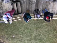 IMG_9564 (Annie Aguirre) Tags: wbw elkhartcountyparks elkhart county parks bonneyville mill park wednesday bird walks walk birding birders birds winter