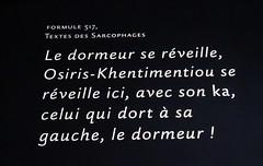 Paris 143 (molaire2) Tags: toutankhamon tout ankh amon exposition expo paris 2019 egyptologie egypte tresor or tombeau halles villette pharaon tutankhamun