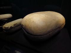 Paris 131 (molaire2) Tags: toutankhamon tout ankh amon exposition expo paris 2019 egyptologie egypte tresor or tombeau halles villette pharaon tutankhamun