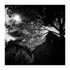 new york (s_inagaki) Tags: street blackandwhite bw monochrome 散歩 bnw モノクロ 白黒 スナップ tokyo snap 東京 slowphoto スローフォト