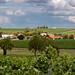 Juillac le coq (Charente)