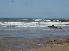 12 August 2019 Croyde Bay (2) (togetherthroughlife) Tags: 2019 august devon croyde croydebay sea coast beach