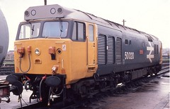 ALMOST NEW (Malvern Firebrand) Tags: 50020 revenge 500xx class50 englishelectric old oak common april 1981 ooc depot refurbished engine loco locomotive br wr stabled largelogo closeup