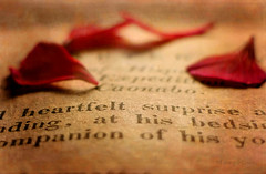 Printed Words ... (MargoLuc) Tags: macromondays theme printedword old book 1846 natural light macro geranium red petals flower