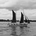 Jeune équipage à la manoeuvre ou au repos, Golfe du Morbihan