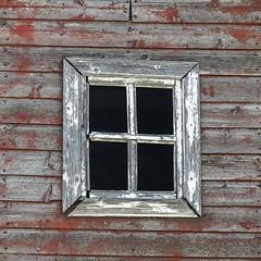 Weathered window from the smaller red barn (annkelliott) Tags: oldandbeautiful barn red old weathered wood grain window closeup