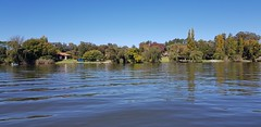 Cruising on the Vaal River (Rckr88) Tags: vanderbijlpark southafrica south africa water cruising vaal river cruisingonthevaalriver rivers vaalriver tree trees nature