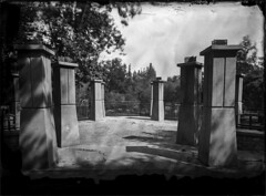 Sentinels - Wet Collodion Negative (Blurmageddon) Tags: senecaimprovedview 5x7 largeformat wetplatecollodion newguycollodion epsonv700 oakpark osaka120mmf63 newguynegativecollodion glassnegative alternativeprocess