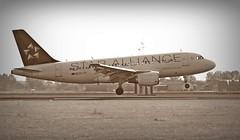 Croatia Airlines ( Star Alliance Livery ) (Mein Ruhrgebiet) Tags: 9acti croatiaairlinesstaralliancelivery airbus a319 eham ams 1029 501d1e croatiaairlines 18r polderbahn